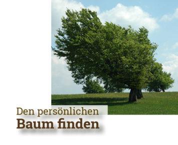 Den persönlichen Baum finden