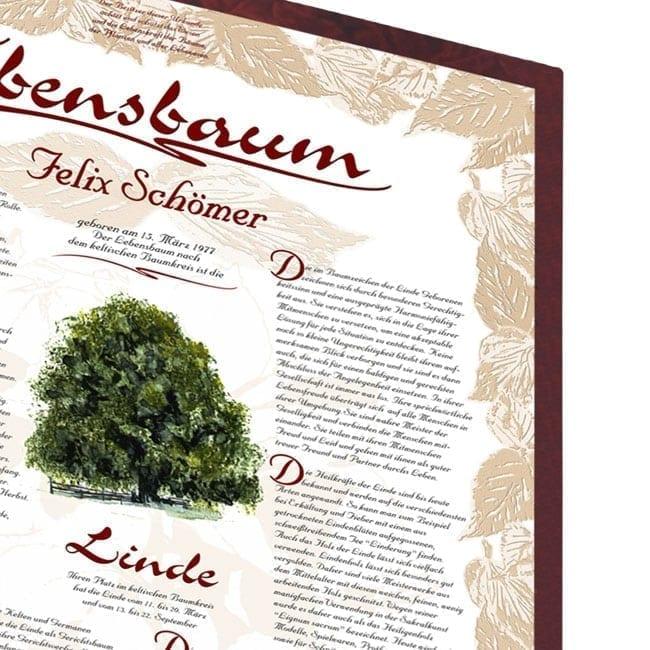 Lebensbaum Urkunde Exklusiv