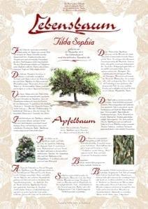 apfelbaum lebensbaum der liebe lebensbaum. Black Bedroom Furniture Sets. Home Design Ideas