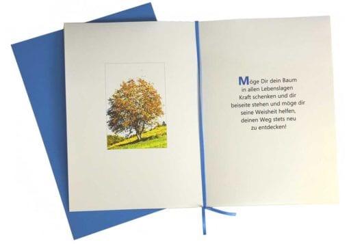 """Lebensbaum Geschenkkarte """"Jungs"""" aufgeklappt"""