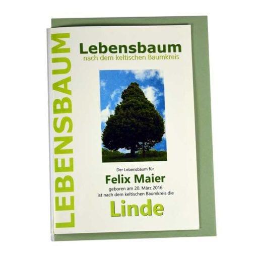 "Lebensbaum Geschenkkarte ""Modern"""