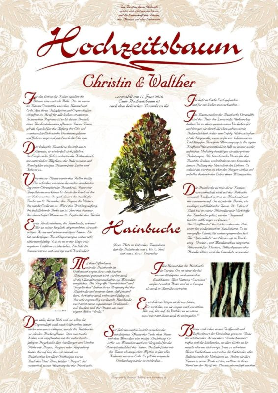 Hochzeitsbaum-Urkunde Exklusiv Hainbuche