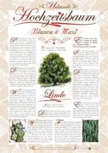 Hochzeitsbaum Urkunde Romantik Linde Harmonie
