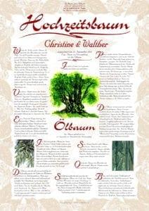 Hochzeitsbaum Urkunde Exklusive Olivenbaum