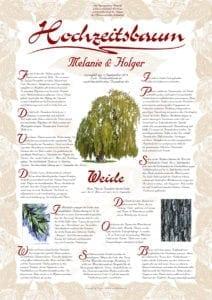 Hochzeitsbaum Urkunde Exklusiv Weide