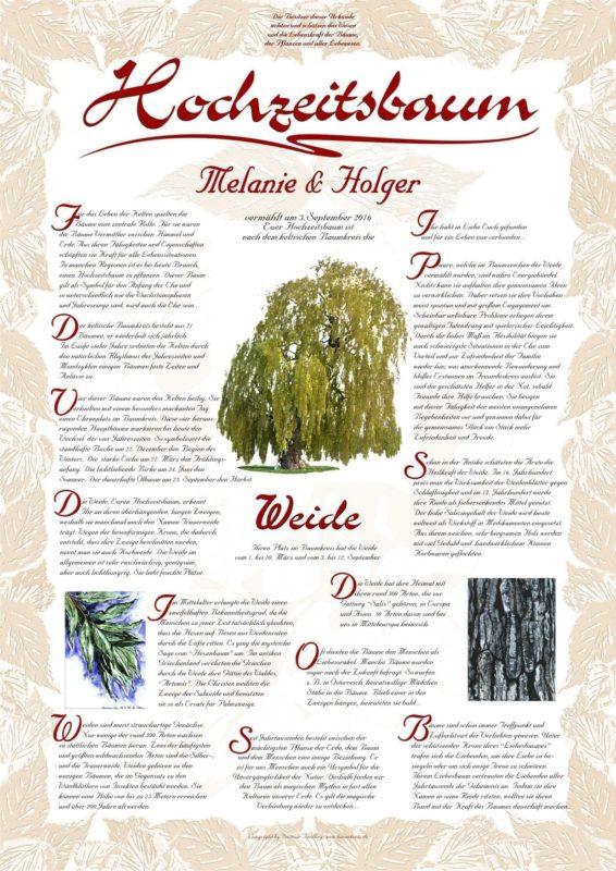 Hochzeitsbaum Urkunde Exklusiv Weide Vitalität