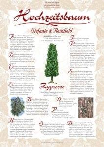 Hochzeitsbaum Urkunde Exklusive Zypresse