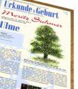 Lebensbaum Urkunde Jungs Modern zur Geburt Details 2