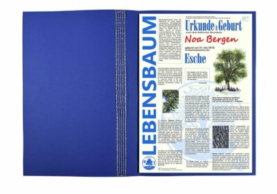 """Lebensbaum Urkunde """"Modern zur Geburt Jungs"""""""
