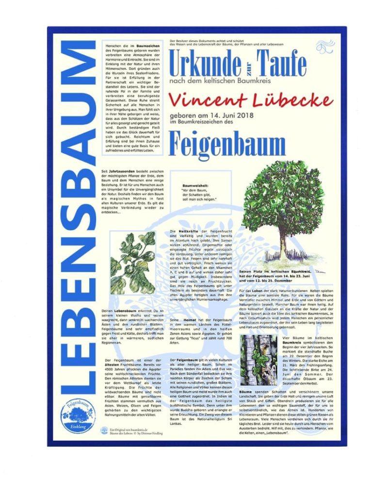 """Lebensbaum Urkunde Modern Jungs zur """"Taufe"""""""