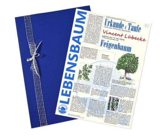 """Lebensbaum Urkunde """"Modern zur Taufe Jungs"""""""