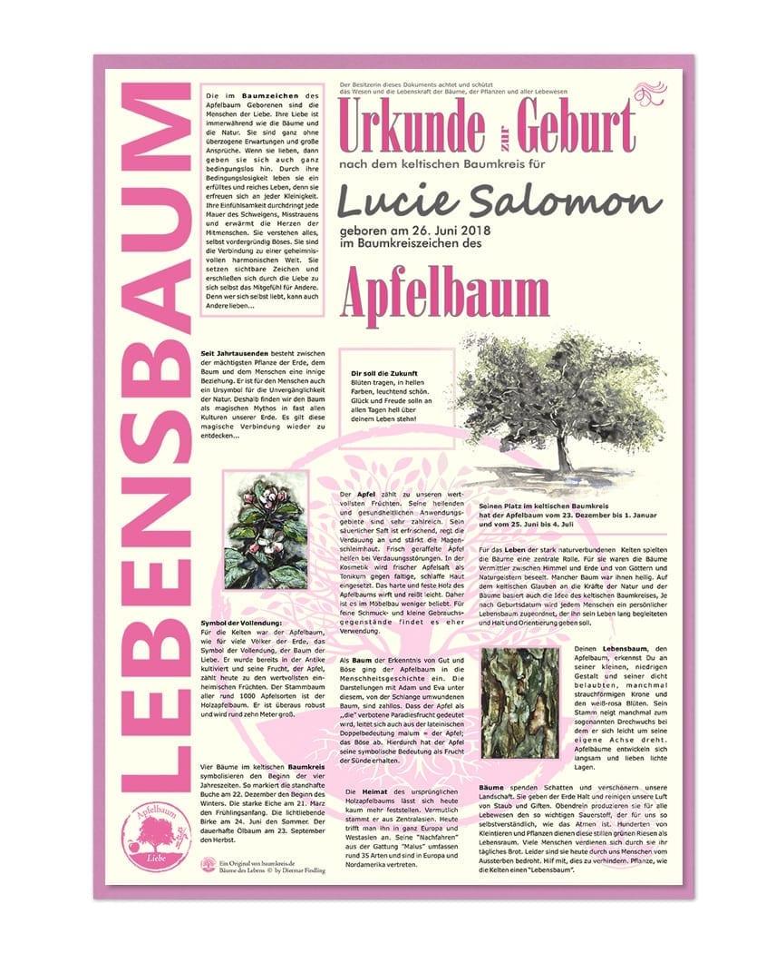Lebensbaum Urkunde Zur Geburt Für Mädchen