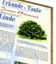 Lebensbaum Urkunde Jungs Modern Zur Taufe