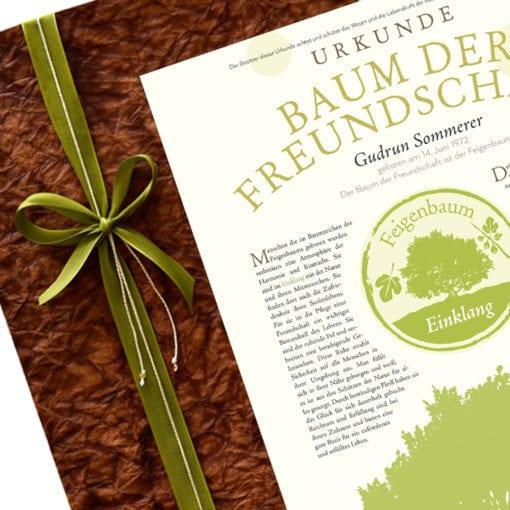 "Urkunde ""Baum der Freundschaft"