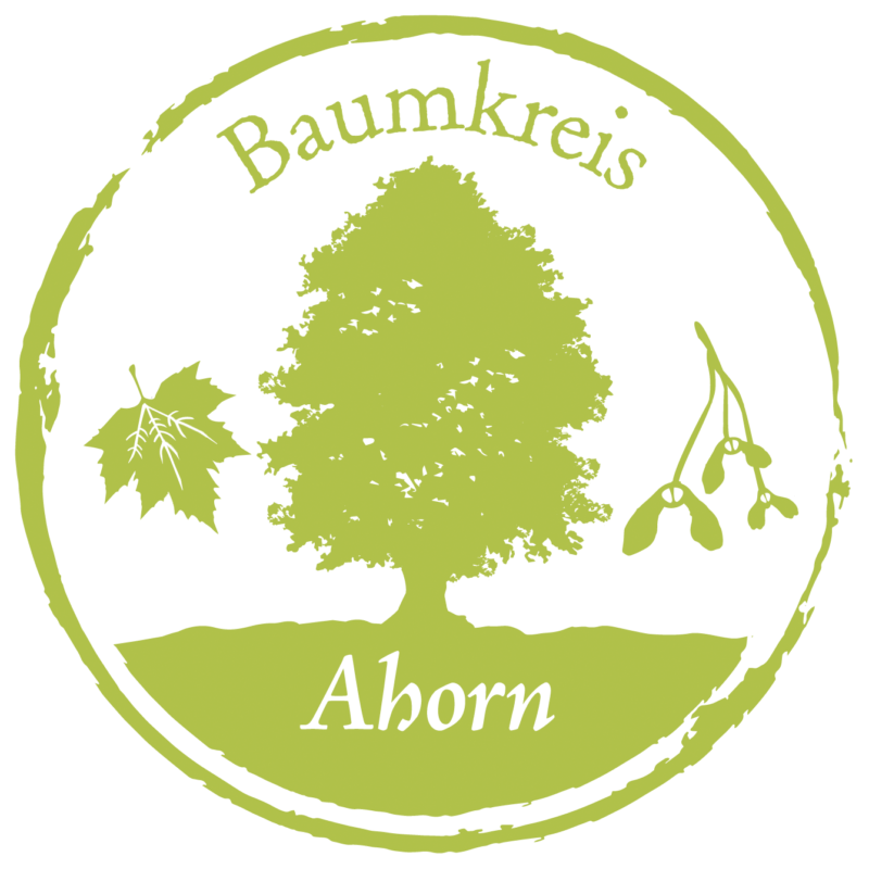 Ahorn Baumkreis Lebensbaum