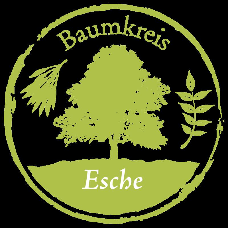 Esche Baumkreis Lebensbaum
