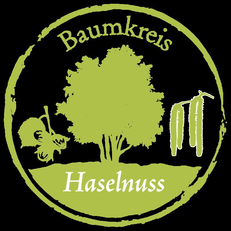 Haselnuss Baumkreis Lebensbaum