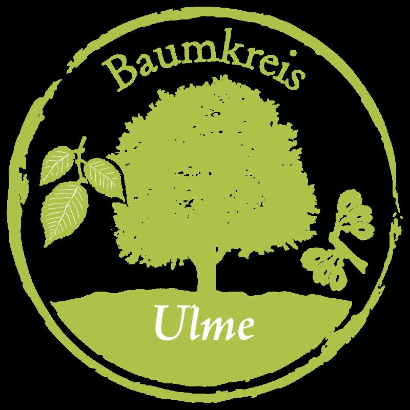 Ulme Baumkreis Lebensbaum