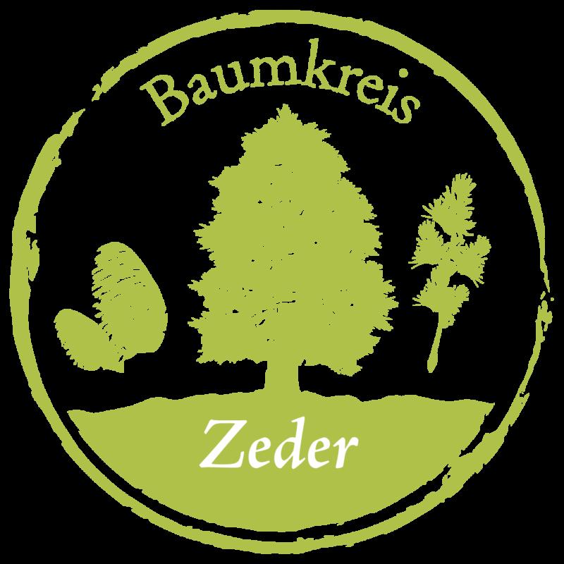 Zeder Baumkreis Lebensbaum