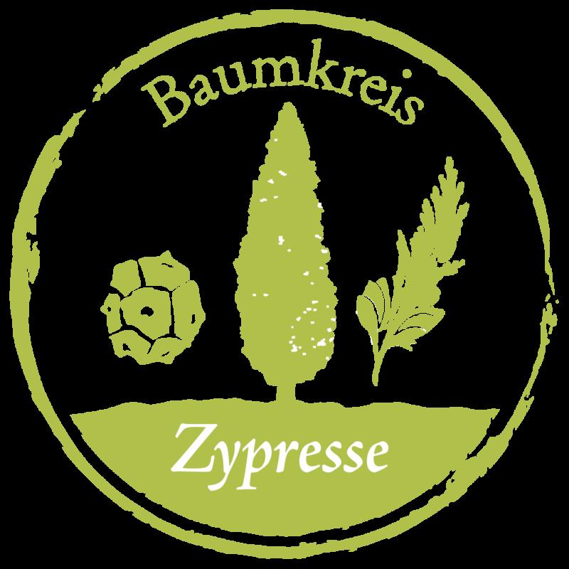 Zypresse Baumkreis Lebensbaum